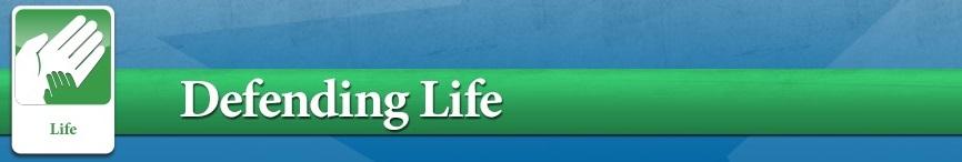 Banner - Life