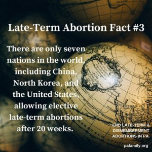 Late Term Fact #3