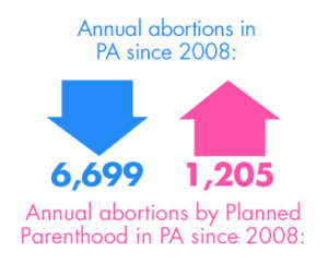 annual-abortions
